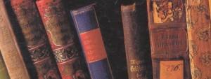 knjiznicarstvo11